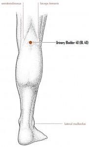 knee-acupressure-point